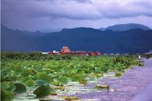 to Jpeg 64K 9809P21 After the storm has passed on Lake Inle, Shan State.