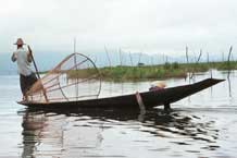 to Jpeg 39K 9809Q09 Intha fisherman leg-rowing on Lake Inle, Shan State.