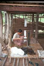 to Jpeg 47K 9809R01 Winding off thread for weaving prior to the dyeing process - Lake Inle, Shan State.