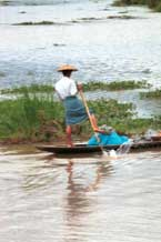 to Jpeg 48K 9809S07 Intha leg-rower on Lake Inle, Shan State.