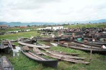 to 44K Jpeg 9809N08 Boats drawn up at the water's edge for the 5 - day rotating market at Nampan on Lake Inle, Shan State.