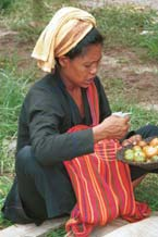 to 35K Jpeg 9809R33 Pa'O woman selling tomatoes at Ywama floating market, Lake Inle, Shan State