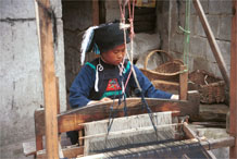 to Jpeg 53K  0110E06   Woman weaving an indigo plaid fabric on an upright heddle loom in Gan He village, Ya Rong township, Huishui county, Guizhou province, south-west China. The people living in this village are known as Qing Miao. There has been considerable intermarriage between Miao and Bouyei and the costume is very mixed.