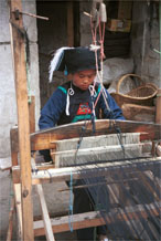 to Jpeg 55K  0110E07   Woman weaving an indigo plaid fabric on an upright heddle loom in Gan He village, Ya Rong township, Huishui county, Guizhou province, south-west China. The people living in this village are known as Qing Miao. There has been considerable intermarriage between Miao and Bouyei and the costume is very mixed.