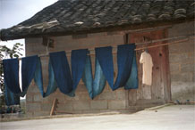 to Jpeg 53K  0110E12 A long length of fabric hanging out on the line to oxidise in the indigo dyeing process in Gan He village, Ya Rong township, Huishui county, Guizhou province, south-west China. The people living in this village are known as Qing Miao. There has been considerable intermarriage between Miao and Bouyei and the costume is very mixed.