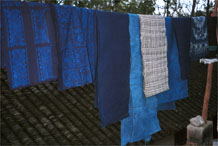 to Jpeg 49K  0110E24Various fabrics hanging on display - wax resist in two shades of indigo, plain fabric in different indigo shades and a length of plaid weaving in Gan He village, Ya Rong township, Huishui county, Guizhou province. This is a Qing Miao (or Bouyei/Miao as there has been much intermarriage and the costume is very mixed).