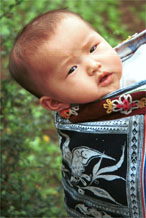 to Jpeg 72K Miao baby looking out of his wax resist indigo baby carrier. Lou Jia Zhuang village, Anshun city, Guizhou province 0110B08