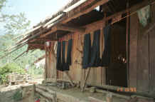 to Jpeg 30K Indigo dyed hemp cloth hanging out to dry in a Red Hmong village in Lai Chau province, northern Vietnam 9510g03.jpg (366114 bytes)