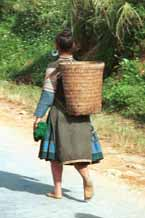 to Jpeg 52K  510A35 Hmong woman walking along the road from Moc Chau to Son La in Son La province.  There is some similarity of costume between these Hmong and photos of Black Hmong in Mai Chau district, Hoa Binh province shown in Hill Tribes of Vietnam, Volume 1 by Joachim Schliesinger. Son La province borders on Hoa Binh province in the far south east with the Moc Chau and Mai Chau districts adjacent. The hair style of the woman is also similar to that shown in the Schliesinger Black Hmong photos.