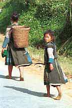 to Jpeg 51K  9510A36 Hmong woman and girl walking along the road from Moc Chau to Son La in Son La province.  There is some similarity of costume between these Hmong and photos of Black Hmong in Mai Chau district, Hoa Binh province shown in Hill Tribes of Vietnam, Volume 1 by Joachim Schliesinger. Son La province borders on Hoa Binh province in the far south east with the Moc Chau and Mai Chau districts adjacent. The hair style of the woman is also similar to that shown in the Schliesinger Black Hmong photos.
