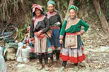 to Jpeg 37K Flowery Hmong  photogallery